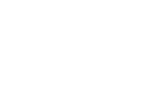 SiLee Films Film Laurel graphic: Cluj Festival 2014